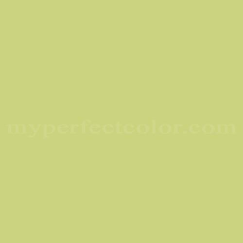 how to buy avocado color