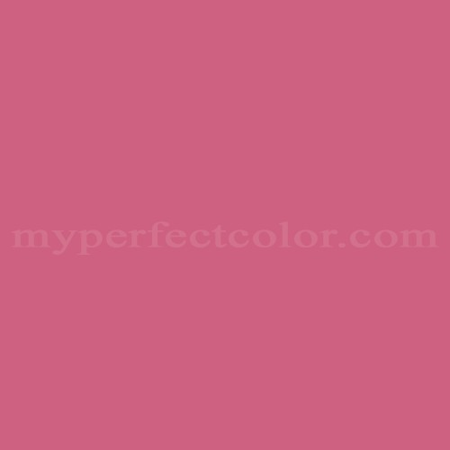 Match of Sherwin Williams™ SW6855 Dragon Fruit *