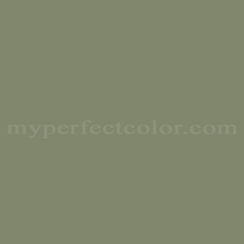 Color Match Of Your World D 1287 Sage Green