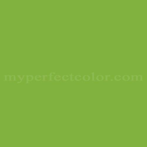 Match of Dal Worth Paints™ A-94C Wild Parrot *