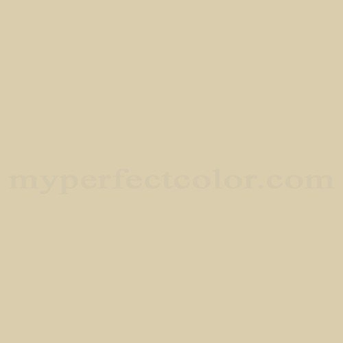 Natural Color System S 24-Y Match | Paint Colors | Myperfectcolor | title | natural color
