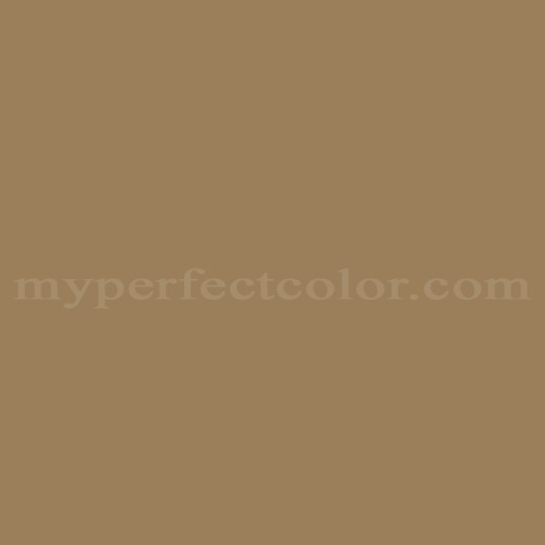 Color Match Of Your World D 1446 Ash Brown