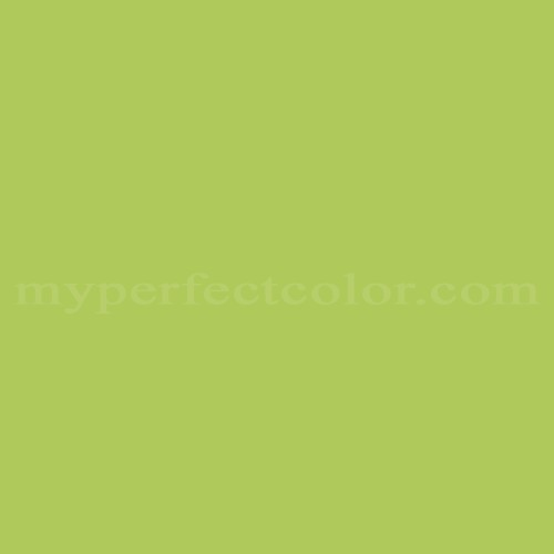 Match of Color Your World™ 10GY52/541 Lime Freckle *