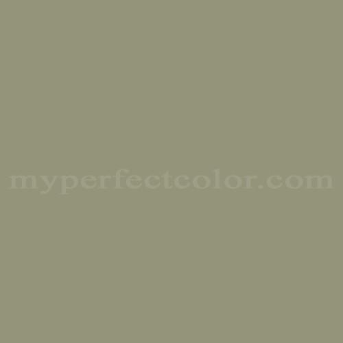 Match of Pittsburgh Paints™ 409-5 Cavern Moss *