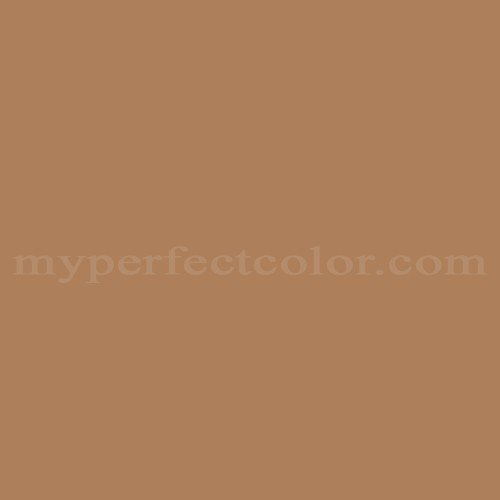 Match of Pittsburgh Paints™ 319-6 Bronco Brown *