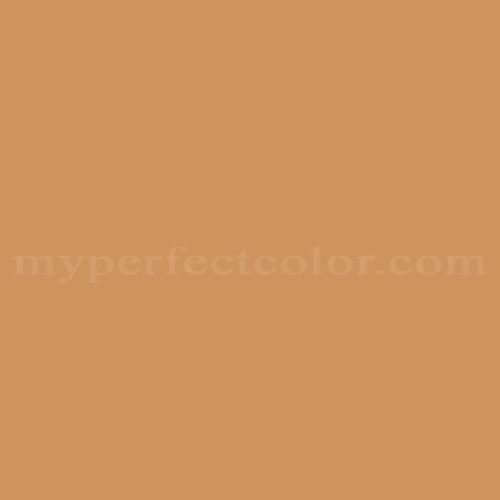 Match of Pittsburgh Paints™ 218-6 Braided Raffia *
