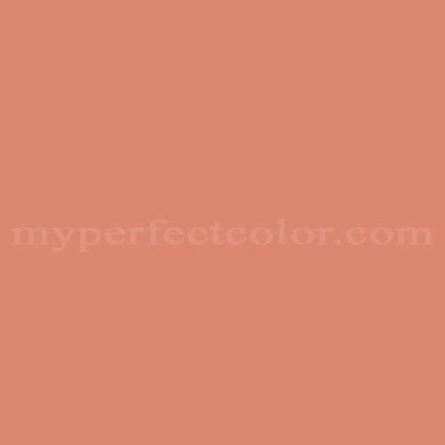 Match of Porter Paints™ 6101-4 Smoked Salmon *