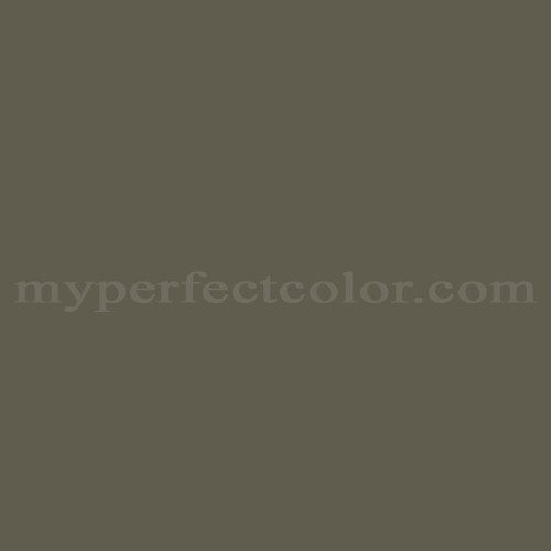 Match of Porter Paints™ 6954-3 Mossy Log *