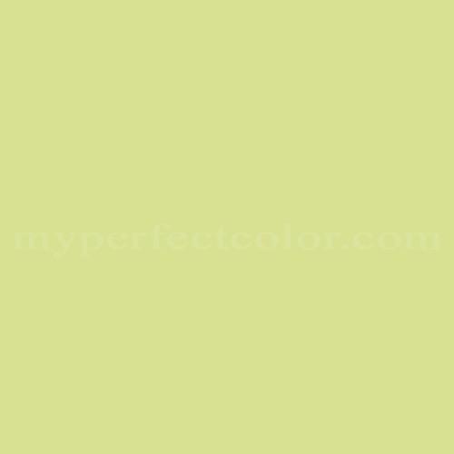Match of Premier Paints™ T24-4 Spring Sprite *