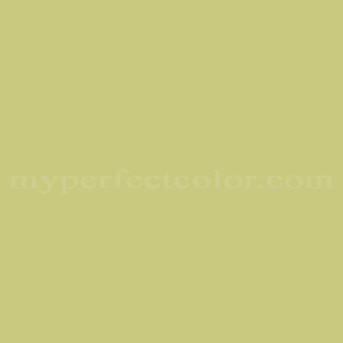 Match of Premier Paints™ T67-4 Kiwi *