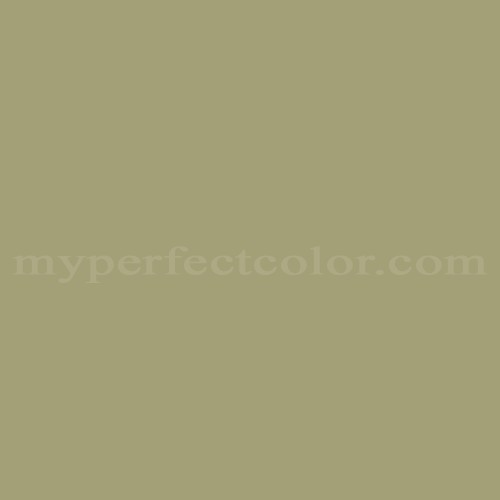 Match of Premier Paints™ T109-6 Beach Grass *