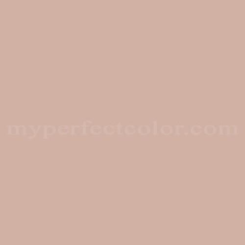 Match of Richard's Paint™ 3194-T Nutmeg Mist *