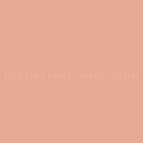 Match of Richard's Paint™ 2255-T Cinnamon Tint *
