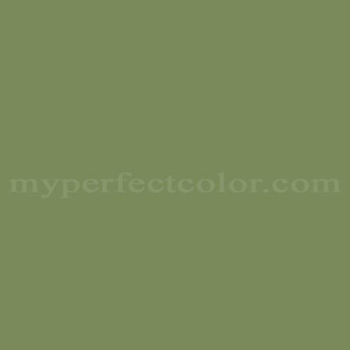 Match of Ralph Lauren™ NZ01B Fern Canopy *