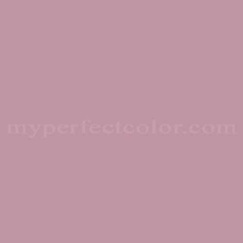 Match of Rodda Paint™ 437 Wild Iris *
