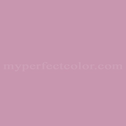 Match of Rodda Paint™ 465 Rose Button *