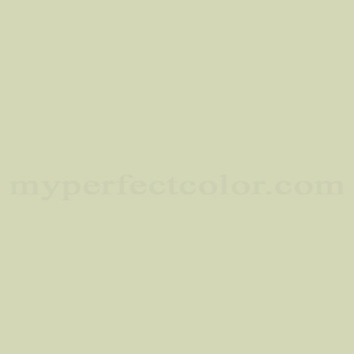 Benjamin Moore Paint Color Champagne
