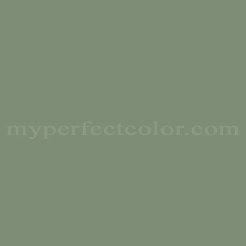 Color Match Of Taubmans Spp8 Ash Green