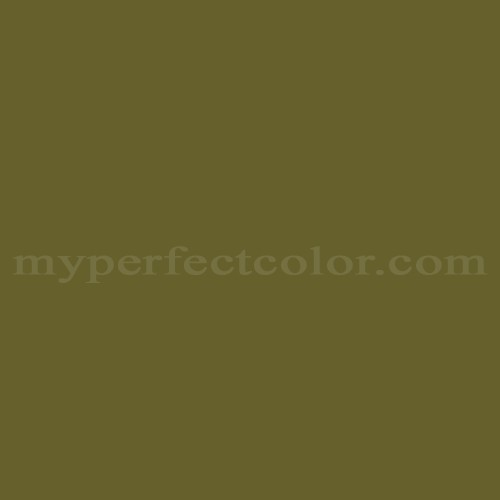 Match of Color Your World™ 70YY13/263 Greek Olive *