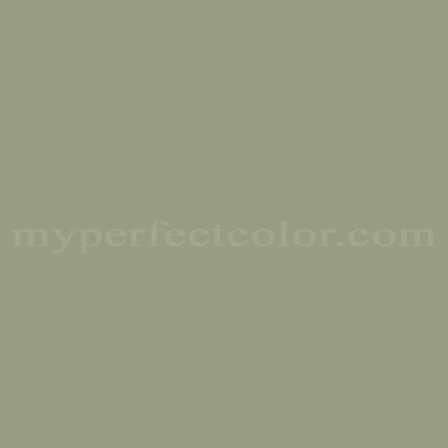 Match of Color Your World™ 10GY34/147 Green Fable *