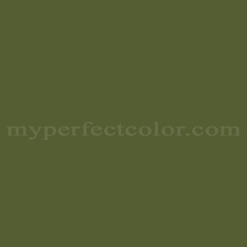 Match of Color Your World™ 10GY12/225 Wild Moss *