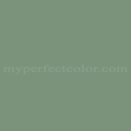 Match of Color Your World™ 70GY27/154 Luscious Moss *