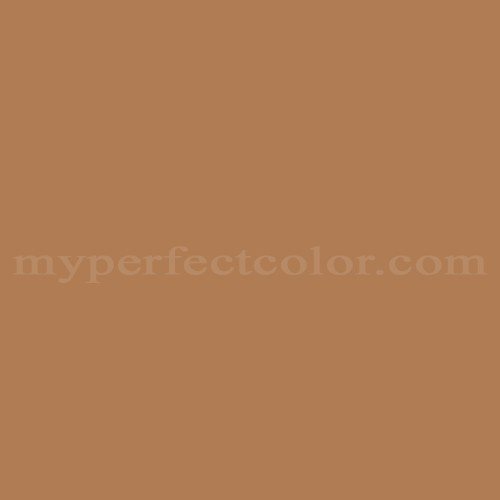 Match of Color Your World™ 90YR25/323 Timberline *