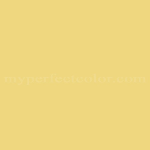 Match of Color Your World™ 60YY69/448 Lemon Glimmer *
