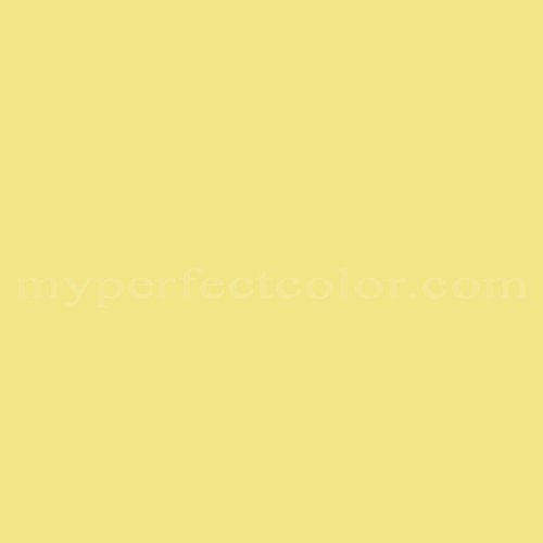 Match of Color Your World™ 74YY77/476 Golden Delicious *