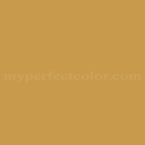 Match of Color Your World™ D 1377 Goldenrod *
