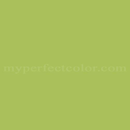 Match of Duron™ 4734D Bibb Lettuce *