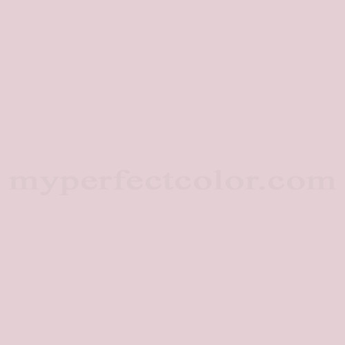 Color Match Of Dulux Pink Champagne