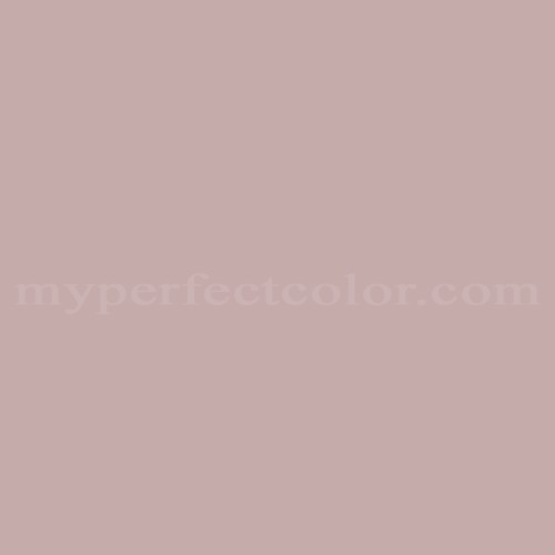 mushroom paint colorDulux 443 Mushroom Bisque Match  Paint Colors  Myperfectcolor