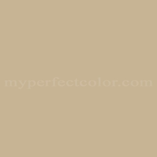 Color Match Of White Knight Paint 2042 Olive Brown