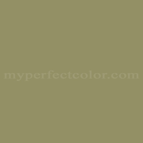 Color Match Of Laura Ashley 910 Olive 4