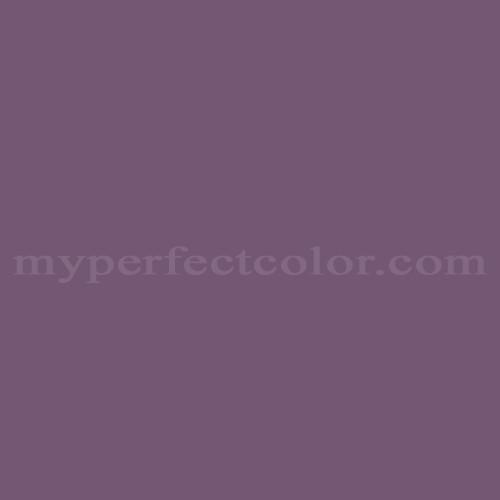 Match of Para Paints™ B1045-3 Grape Wine *
