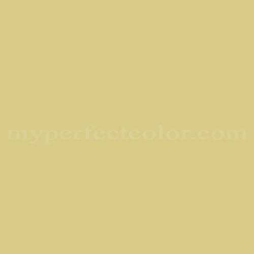 Match of Para Paints™ B528-1 Kiwi Fruit *