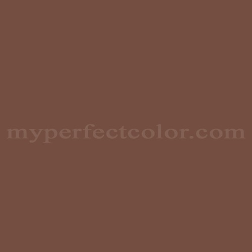 Match of Para Paints™ B215-3 Brown Velvet *