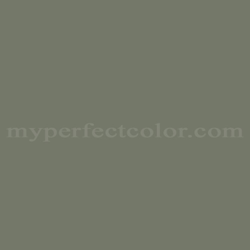 Match of Pittsburgh Paints™ 510-6 Thyme Green *