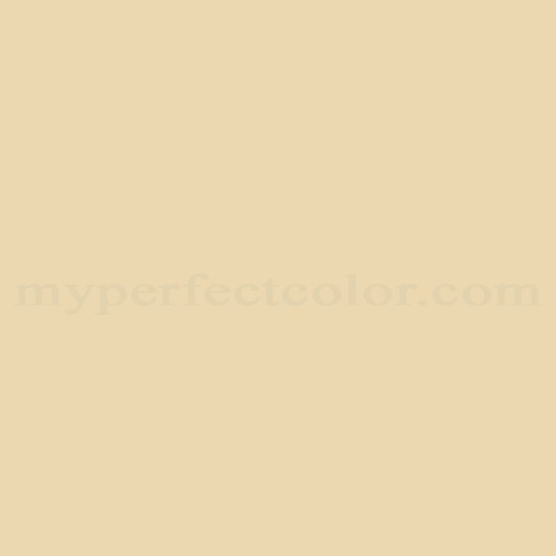 Sherwin Williams Sw6393 Convivial Yellow Match Paint