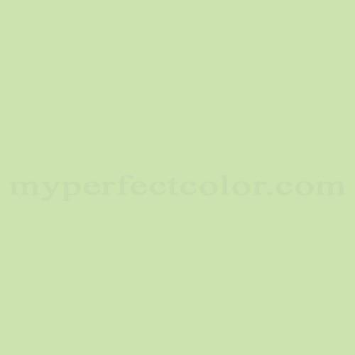 Color Match Of True Value E306 Light Moss