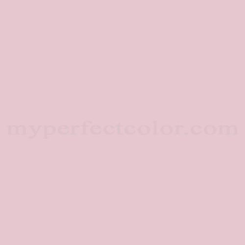 Match of Ace™ 92-E Pink Petunia *