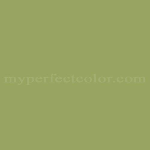 Color Match Of Ace 77 B Split Pea