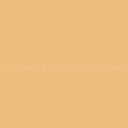 Behr 310d 4 Gold Buff Match Paint Colors Myperfectcolor