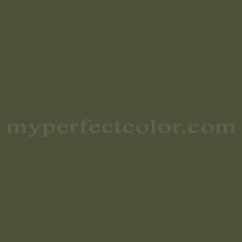 Color Match Of Ral Ral6003 Olive Green