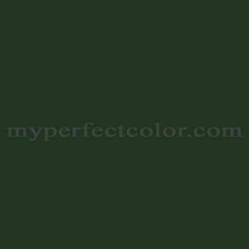 Color Match Of Ral Ral6009 Fir Green