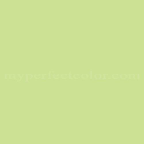 Walmart 91294 Celery Stick Match Paint Colors