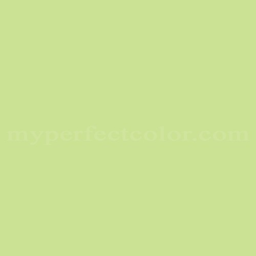 Celery Green Paint Color