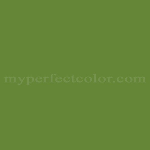 Color Match Of Olympic B67 6 Antique Green