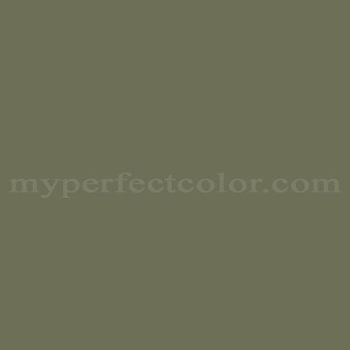 Olympic c67 5 dark sage match paint colors myperfectcolor for Dark sage green color